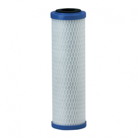 Pentek EP-10 Carbon Filter Cartridge (155531-43)
