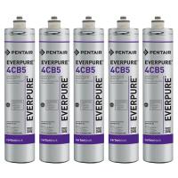 Everpure 4CB5 EV9617-16 Filter Cartridge