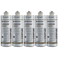 Everpure OCS2 EV9618-02 Filter Cartridge