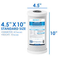 """Big Blue Twin Water Filter System with Filters 10"""" x 4.5"""""""
